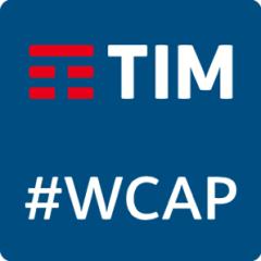 Logo TIM 300x300