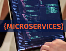 WEBIANR MICROSERVICES 220X170
